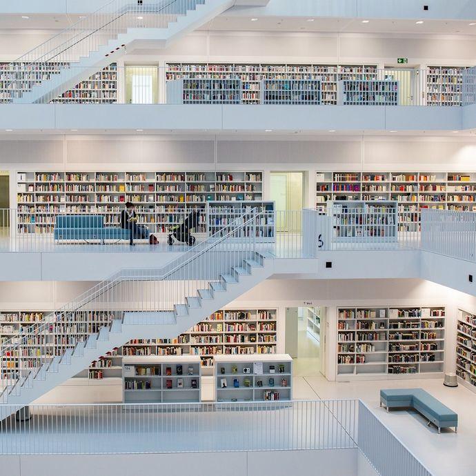 steersman_library_resources.jpg